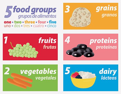 Count To Five Food Groups La Publishing